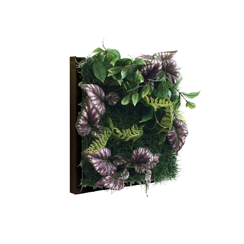 Wall Plants frame